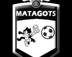 logo-matagots