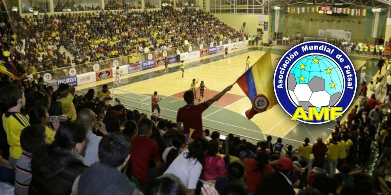 amf futsal committee